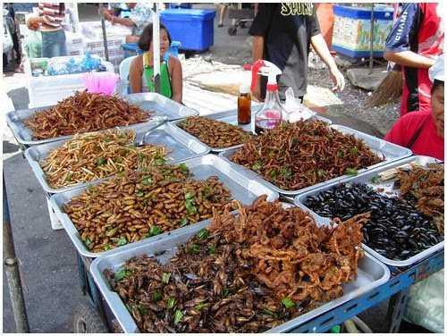 di-phuot-thai-lan-tan-huong-cuoi-tuan-bangkok-con-trung
