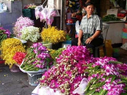 kham-pha-cho-hoa-o-bangkok-thai-lan